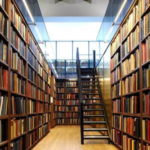 Библиотеки Лесозаводска