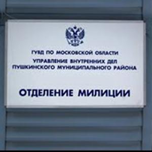 Отделения полиции Лесозаводска